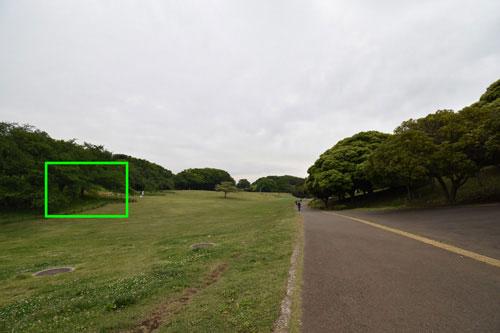Nikon(ニコン) AF-P DX NIKKOR 10-20mm f/4.5-5.6G VR 作例1拡大枠