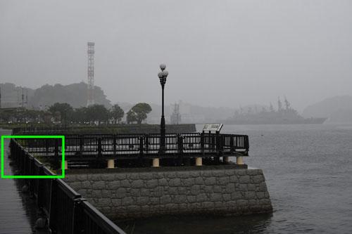 Nikon(ニコン) AF-S DX NIKKOR 35mm f/1.8G 作例3拡大枠