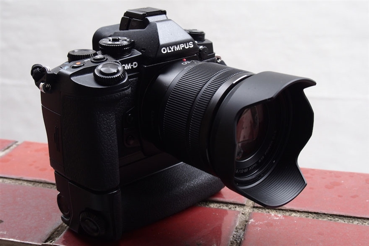 Panasonic 12-60mm